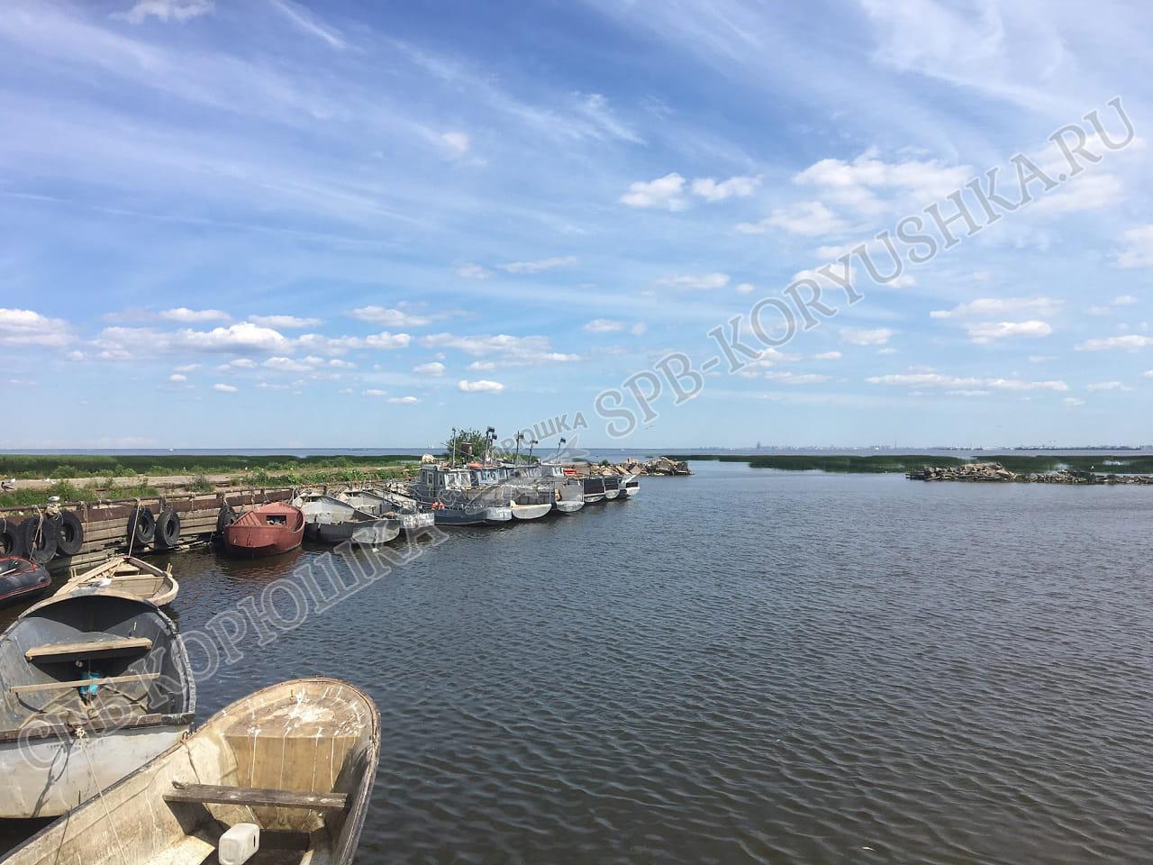 Рыболовецкий колхоз Лигово 2016